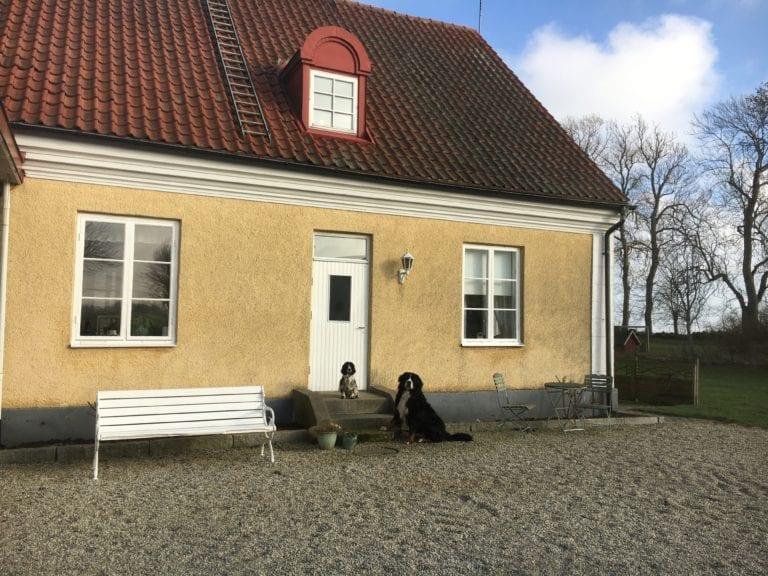 Borrby Kungsgård Undantaget nr 1916