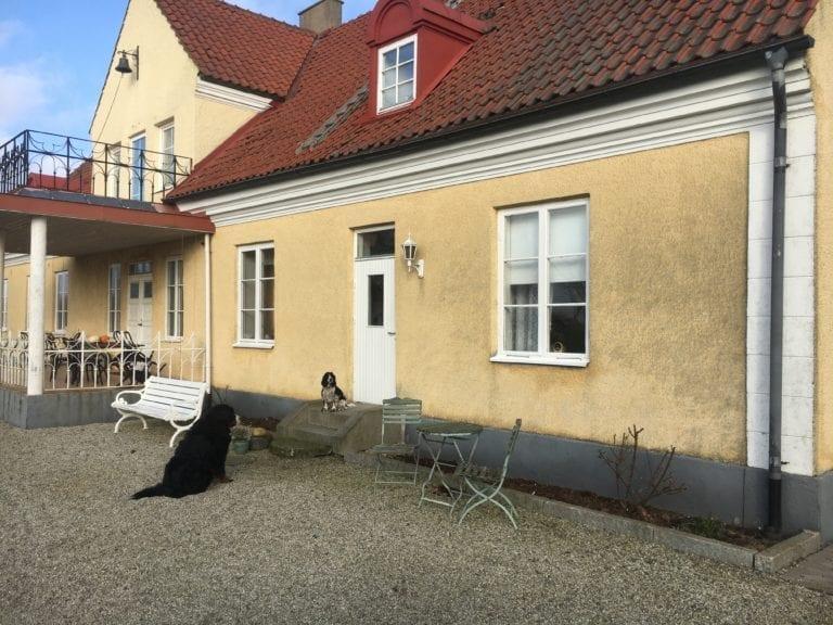 Borrby Kungsgård Undantaget nr 1920